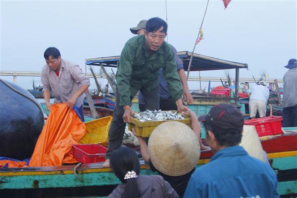 Chính phủ hỗ trợ kịp thời, ngư dân vươn khơi bám biển