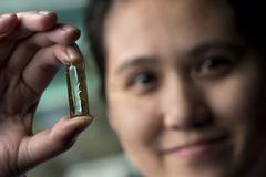 Cô gái Việt phát minh công nghệ pin siêu bền chấn động