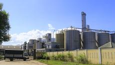 Nhà máy lớn nhất Đông Nam Á 'chết lâm sàng'