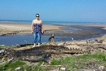 Phát hiện xác quái vật bí ẩn dạt vào bờ biển Anh
