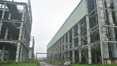 Công nghiệp ethanol: Chưa thành hình đã 'chết yểu'