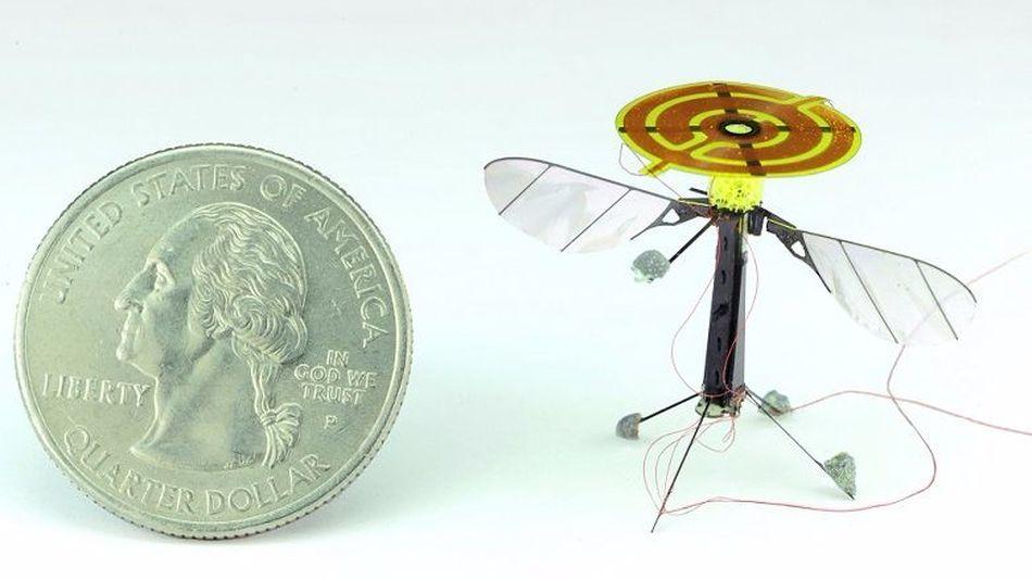 robot, tí hon, nhỏ nhất thế giới,