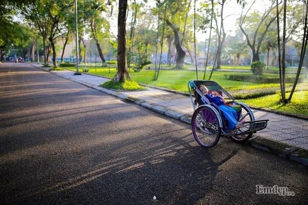 Mải mê ngắm hoa hoàng điệp trải vàng trên con đường xứ Huế