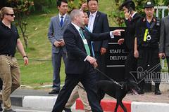 Chó nghiệp vụ cụt đuôi bảo vệ ông Obama tại VN