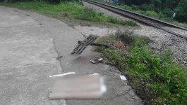 Bị ô tô của mình đè chết khi nhảy xuống để tránh tàu hỏa
