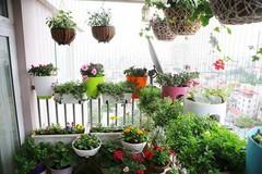Những căn hộ chung cư đẹp hút hồn nhờ ban công hoa