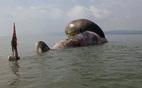 Cá voi khủng chết dạt bờ biển Nghệ An