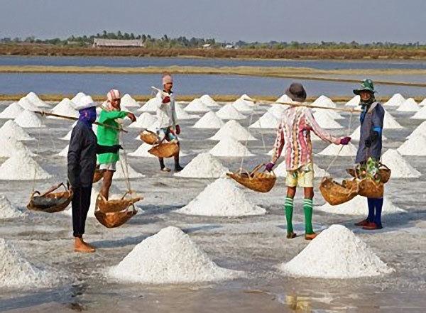 Công bố kết quả phân tích muối biển miền Trung