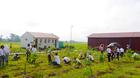 Panasonic trồng 2 vạn cây xanh ở Thanh Hóa