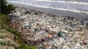 Du khách Nga kêu cứu vì biển Mũi Né ngập rác