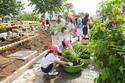 Aeon đã trồng 10 vạn cây xanh ở Việt Nam