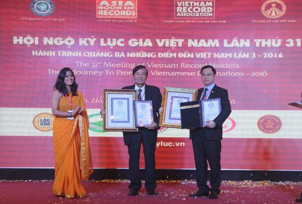 sâm Ngọc Linh, sâm Việt Nam, kỷ lục Guiness, núi Ngọc Linh, nhân sâm