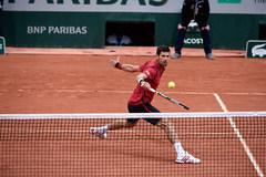 Murray đại chiến Djokovic tại chung kết Roland Garros