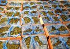 Bắt 1,2 tấn lá lạ chứa ma túy cực mạnh ở sân bay