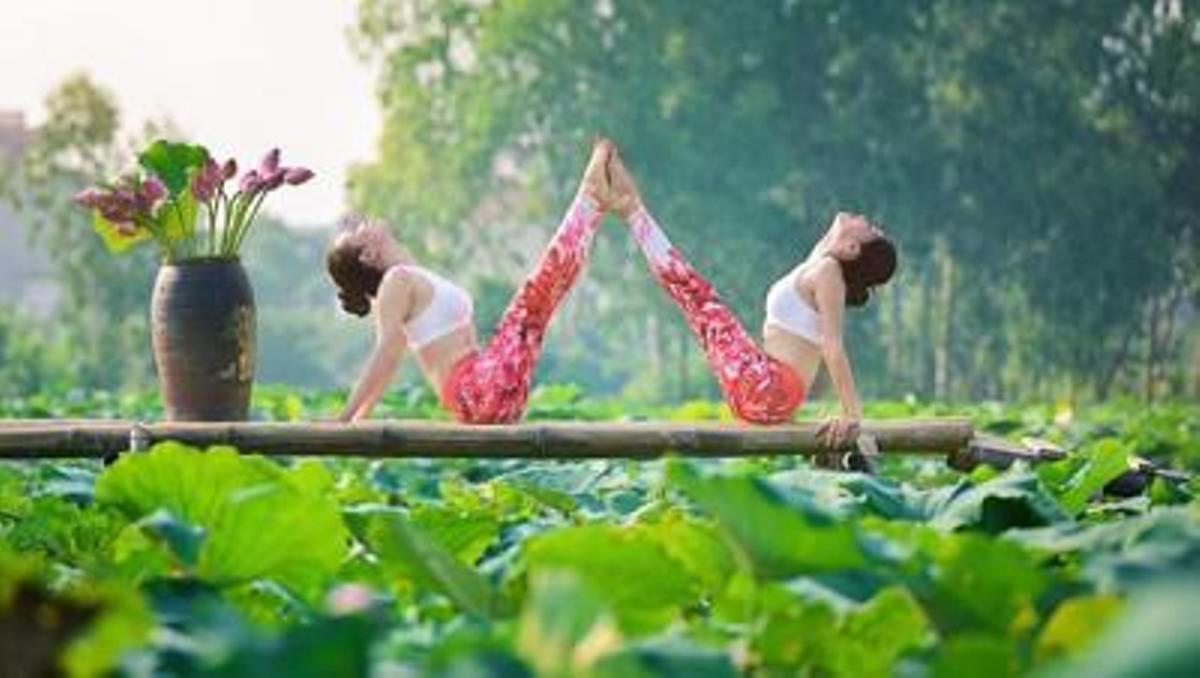 Mê mẩn ngắm bộ ảnh 2 cô gái tập yoga bên hồ sen