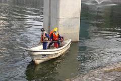 Dậy từ mờ sáng vớt cá chết hồ Hoàng Cầu cho chó mèo