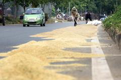 Đại lộ hiện đại nhất Việt Nam thành sân phơi