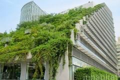 Những tòa nhà cao tầng phủ cây xanh mát mẻ trên thế giới