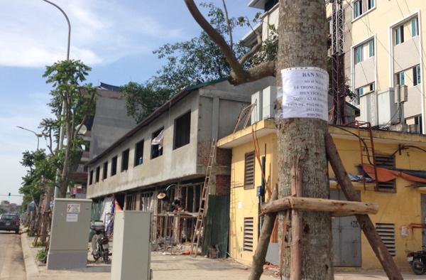 Nhà nghỉ leo cột điện trên phố kiểu mẫu Lê Trọng Tấn