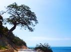 Hè này về Nam Du tắm biển xanh, chơi đùa với cát trắng