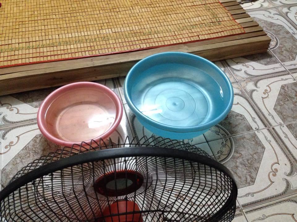 Nắng 40 độ C, dân Hà Nội rủ nhau 'ngủ chung' để tiết kiệm
