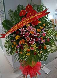 Mong VietNamNet có nhiều bài bổ ích đến độc giả