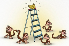 Bài học về sếp vùi dập nhân viên