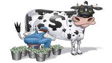 'Con bò sữa' tỷ đô: Miếng ngon khó bỏ?