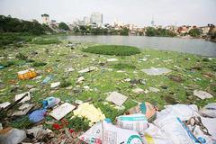 """Dự án cải tạo hồ Linh Quang: """"Đất vàng"""" Khâm Thiên có giá hơn 50 triệu đồng/m2"""
