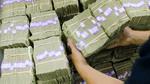 Dùng hàng triệu USD tiền giấy để... trồng cây