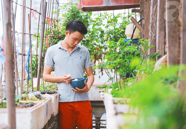 Vườn rau, ao cá trên sân thượng của chàng trai 9x ở ngay trung tâm Hà Nội