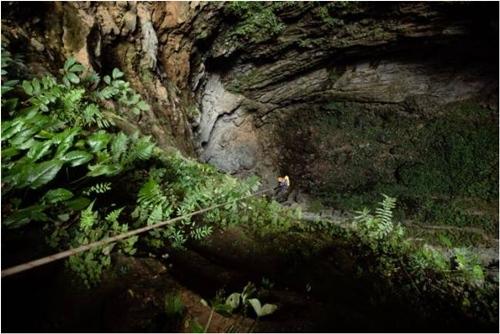 Hang động đẹp lung linh vừa phát hiện ở Quảng Bình