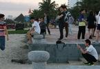 Đà Nẵng nói gì về du khách Trung Quốc?