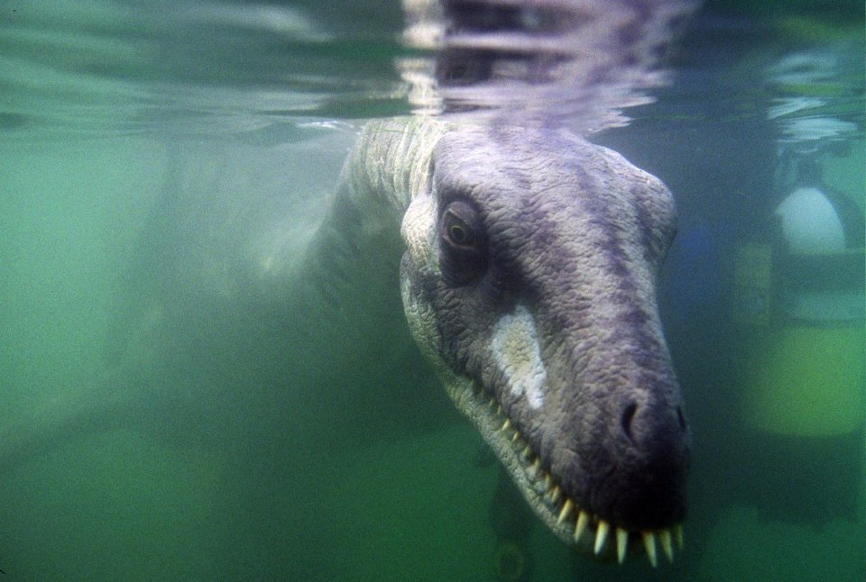 Tranh cãi bộ xương lạ nghi quái vật hồ Loch Ness đã chết