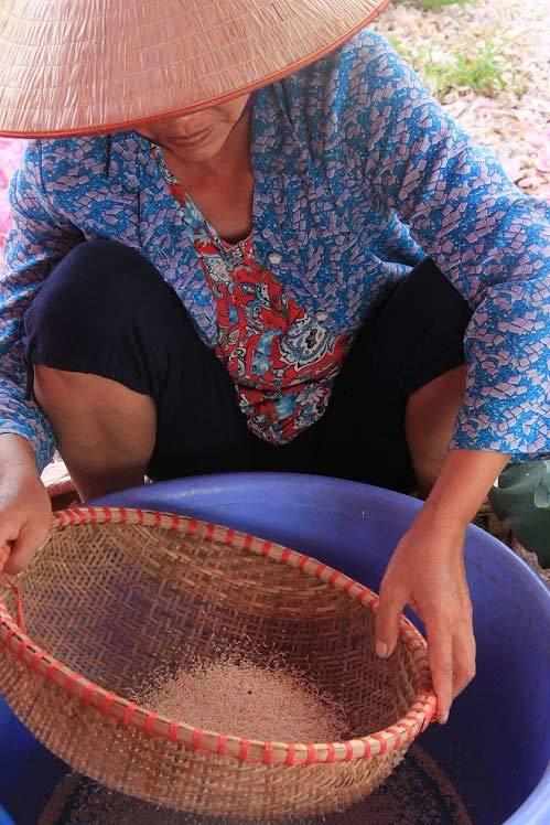Trà cổ Hà Nội ướp từ sen có giá 7 triệu/kg có gì đặc biệt?