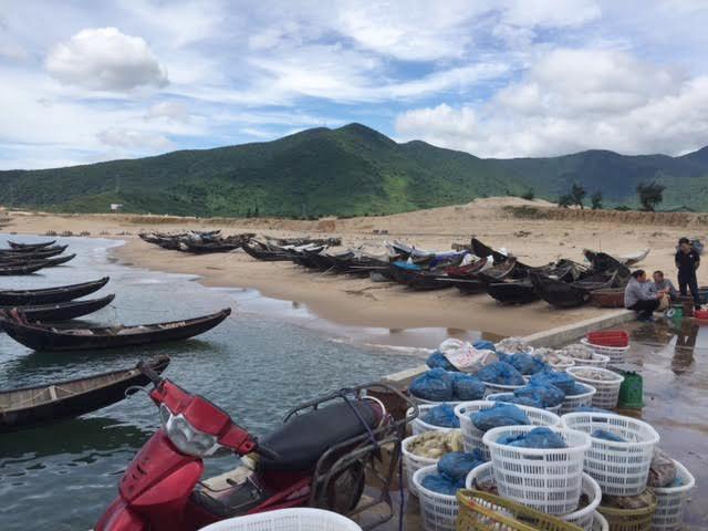 Hà Tĩnh lập hội đồng đánh giá thiệt hại do Formosa gây ra