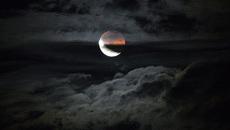 Thiếu nữ đêm trăng