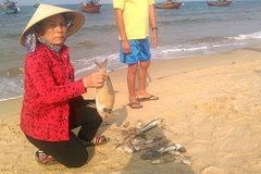 Quảng Bình lập hội đồng đánh giá thiệt hại sự cố môi trường biển