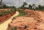 Doanh nghiệp đào hào...chống voi bị phạt 50 triệu đồng