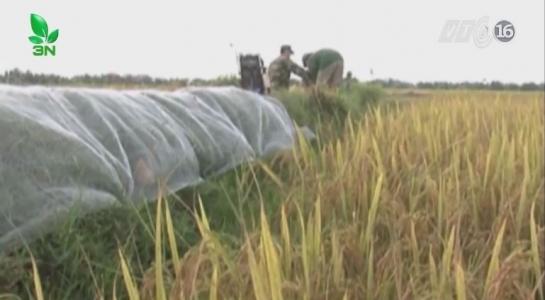 Sáng chế máy bắt 10 kg chuột trong 1 giờ của nông dân Quảng Bình