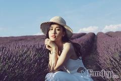 Thiếu nữ Việt đẹp ngẩn ngơ trên cánh đồng oải hương ở Pháp