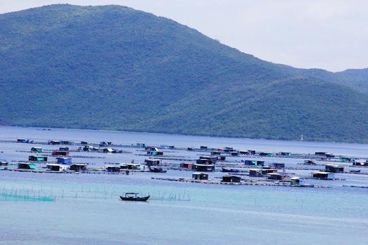 Vịnh Vân Phong sau khi được giải cứu khỏi thép tỉ đô