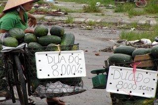 'Luật ngầm' của dân buôn hoa quả vỉa hè