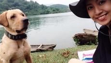 Gặp cô gái Việt đưa 2 chú chó đi phượt khắp mọi nơi