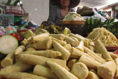 Măng tươi Hà Nội nhiễm chất độc vàng ô
