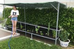 Mát mắt với vườn rau trên sân thượng ở căn Penthouse triệu đô của Ngọc Trinh