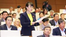 Sau vụ bà Nguyệt Hường, TTCP đề xuất cơ chế phòng ngừa