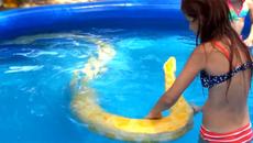 Clip thiếu nữ bơi cùng trăn vàng 'khủng' gây sốc