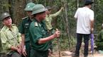 Tướng Biên phòng thị sát hiện trường phá rừng pơ mu