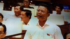 Chánh án TAND Đắk Lắk kêu cứu cho rừng Tây Nguyên